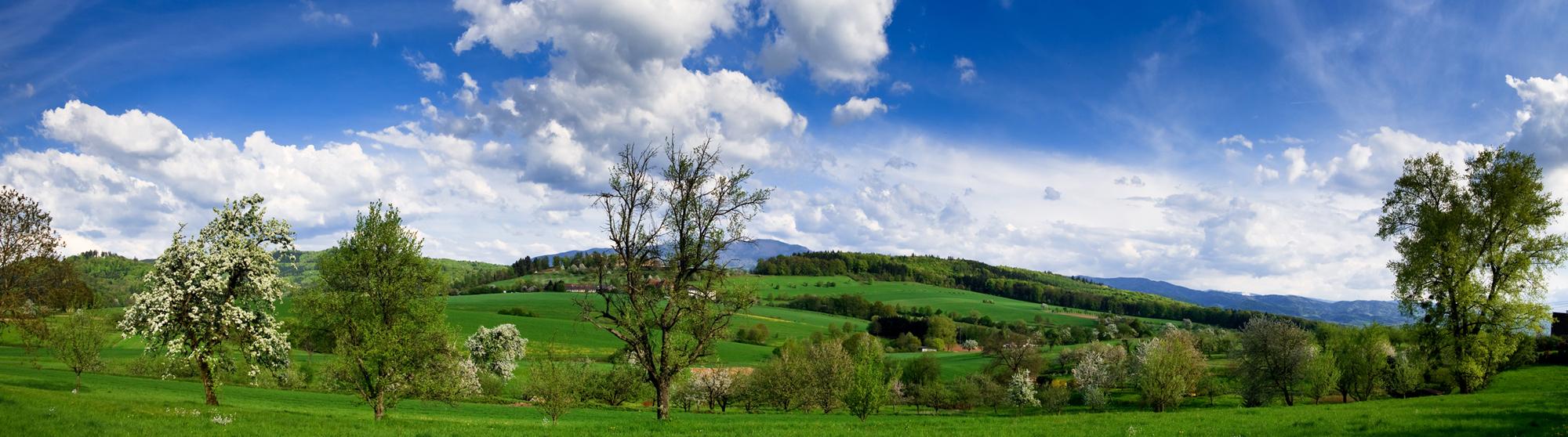 regio-schwarzwald